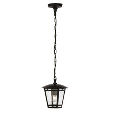 Riley 1 Light Outdoor Hanging Lantern