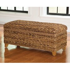 Hydeville Trunk by Bay Isle Home