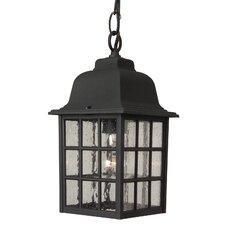 Tolham 1-Light Outdoor Hanging Lantern