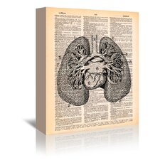 Lungs' by Book Dictionary Art Graphic Art on Wrapped Canvas  by East Urban Home
