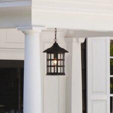 Carlsen 1-Light Outdoor Hanging Lantern