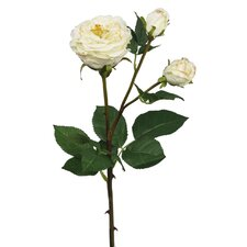 Single Rose Stem with Open Buds Flower