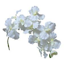Single Orchid Stem