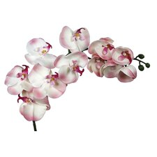 Real Touch Single Orchid Stem