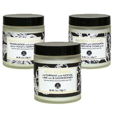 3 Piece Botanical Garden Scented Soy Jar Candle