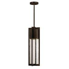 Craney 1-Light Outdoor Pendant