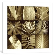 'Tropical Leaves II' Graphic Art Print on Canvas