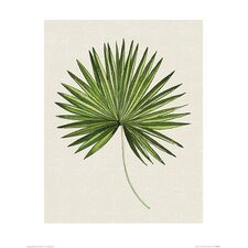 'Tropical Leaf III' Painting Print