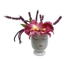 Celfie Amaranth and Orchids Floral Arrangements in Pot