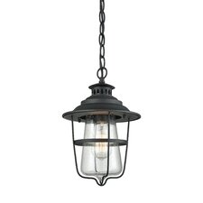 Arria 1-Light Outdoor Hanging Lantern