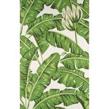 Zaliki Hand-Hooked Green Indoor/Outdoor Area Rug