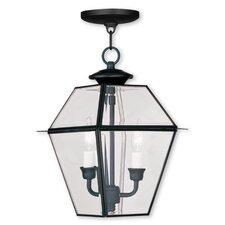 Fulmore 2-Light Outdoor Hanging Lantern
