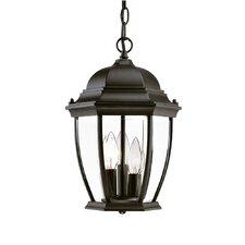 Drumkeeran 3-Light Outdoor Hanging Lantern