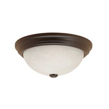 Bog Water 2-Light Flush Mount