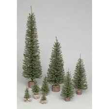 Carmel 2' Green Artificial Christmas Tree