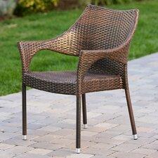Danna Outdoor Wicker Arm Chair (Set of 2)