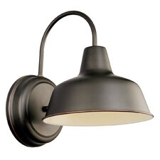 Francois 1-Light Outdoor Barn Light