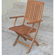 Dracaena Folding Patio Chair (Set of 2)