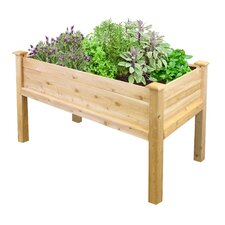 Elevated 2 ft x 4 ft Raised Garden