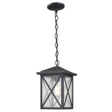Erikson 1 Light Outdoor Hanging Lantern
