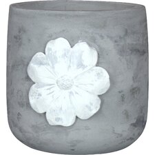 Daisy Cement Pot Planter (Set of 3)