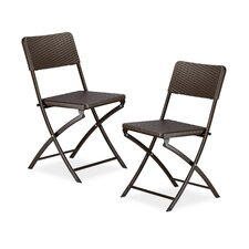 Bastian Metal Folding Chair (Set of 2)
