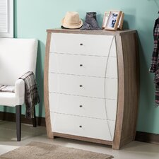 Fenish Transitional 5 Drawer Accent Chest by Enitial Lab