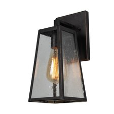 Devaney 1-Light Outdoor Wall Lantern