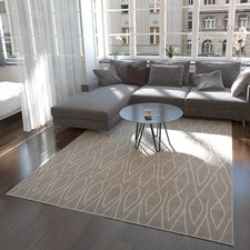 Spady Gray Area Rug