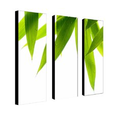 Life is Green by Philippe Sainte-Laudy 3 Piece Photographic Print on Wrapped Canvas Set
