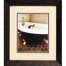 Kitty III by Dratfield, Jim Framed Photographic Print
