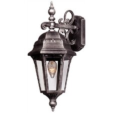 Astor 1-Light Outdoor Wall lantern