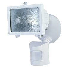 1-Light Outdoor Floodlight