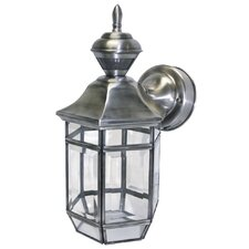 Lexington 1-Light Outdoor Wall Lantern