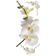 Room Mates Deco 3 Piece White Orchid Wall Decal