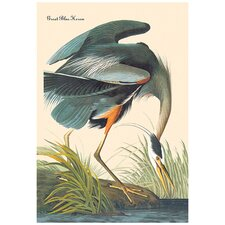 Great Blue Heron by John James Audubon Graphic Art on Wrapped Canvas
