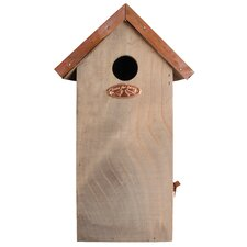 Great Wren Bird House