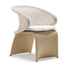 Exotica Dining Arm Chair with Cushion