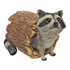 Raccoon Statue
