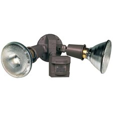 2-Light Outdoor Spotlight
