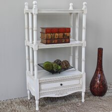 Wilder 42 Accent Shelves Bookcase by World Menagerie