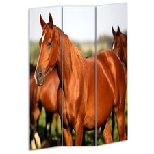 72 x 48 Horse 3 Panel Room Divider by Screen Gems