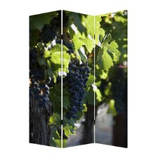 72 x 48 Wine Country 3 Panel Room Divider by Screen Gems