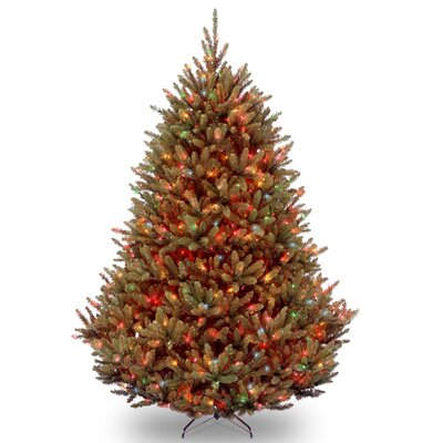 National Tree Co Natural Fraser 7 5' Green Fir Artificial  - Multi Colored Christmas Trees