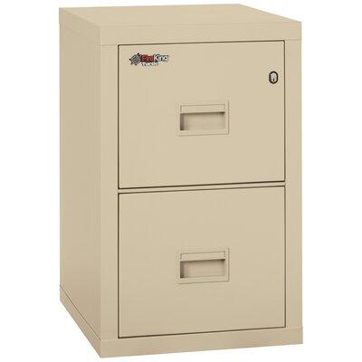 Lovely FireKing Turtle Fireproof 2 Drawer Vertical File Cabinet U0026 Reviews | Wayfair