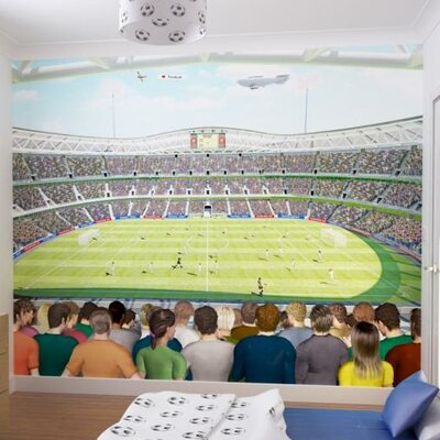 Walltastic Football Crazy Wall Mural U0026 Reviews | Wayfair.co.uk Part 41