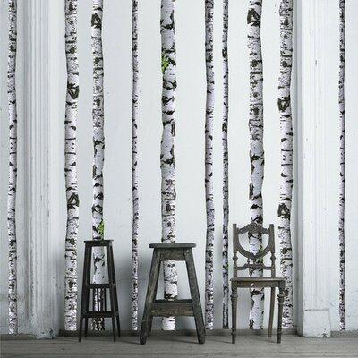 Awesome Walls Need Love Super Real Birch Wall Decal U0026 Reviews | Wayfair Design Ideas