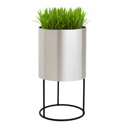 Knox Iron Pot Planter - Modern Planters AllModern