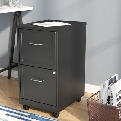 Zipcode Design Forest 2 Drawer Mobile Vertical Filing Cabinet ...