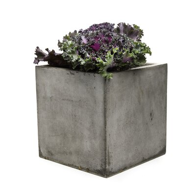 My Spirit Garden Cub Composite Planter Box U0026 Reviews | Wayfair